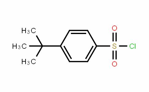 4-叔丁基苯磺酰氯