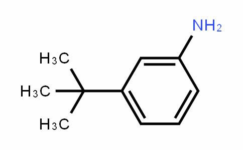 3-叔-丁基苯胺
