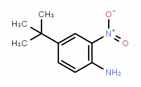 4-(Tert-butyl)-2-nitroaniline