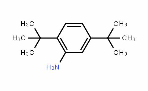 2,5-二叔丁基苯胺