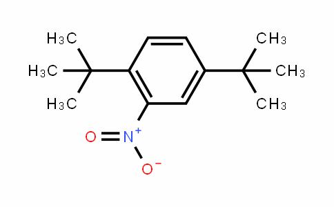 2,5-二叔丁基硝基苯