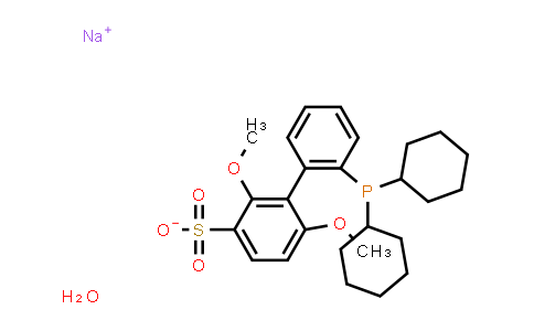 SC119432 | 1049726-96-6 | Sodium 2'-dicyclohexylphosphino-2,6-dimethoxy-1,1'-biphenyl-3-sulfonate hydrate