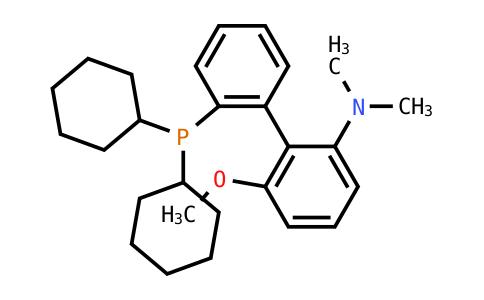 SC119449 | 1160556-61-5 | 2'-(Dicyclohexylphosphino)-6-methoxy-N,n-dimethylbiphenyl-2-amine