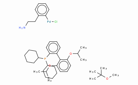SC10479 | Chloro(2-dicyclohexylphosphino-2',6'-di-i-propoxy-1,1'-biphenyl)[2-(2-aminoethylphenyl)]palladium(II), methyl-t-butylether adduct