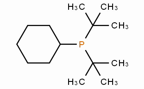 SC11143 | Cyclohexyldi-t-butylphosphine