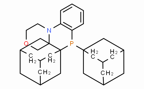 SC11165 | N-[2-(di-1-adamantylphosphino)phenyl]morpholine