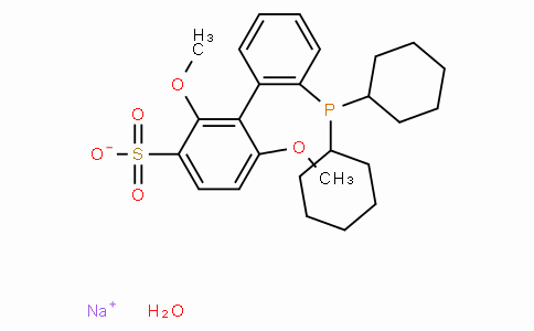 SC11292 | 2'-Dicyclohexylphosphino-2,6-dimethoxy-3-sulfonato-1,1'-biphenyl hydrate sodium salt