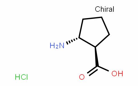 (1R,2R)-2-aminocyclopentanecarboxylic Acid Hydrochloride Salt