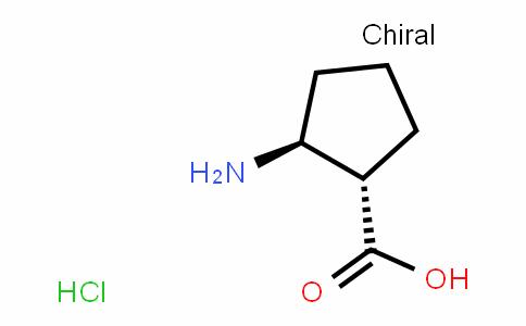 (1S,2S)-2-aminocyclopentanecarboxylic Acid Hydrochloride Salt