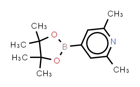 2,6-DIMETHYLPYRIDINE-4-BORONIC ACID, PINACOL ESTER