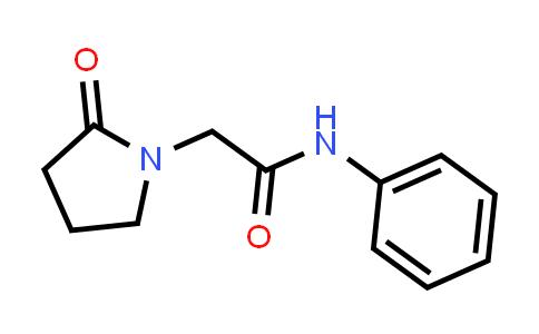 2-(2-oxopyrrolidin-1-yl)-N-phenylacetaMide