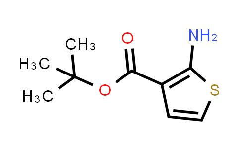 2-AMINOTHIOPHENE-3-CARBOXYLIC ACID T-BUTYL ESTER