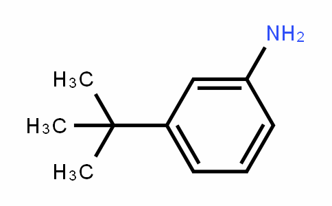 3-(Tert-butyl)aniline