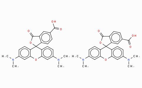 5(6)-Carboxy-tetramethylrhodamine