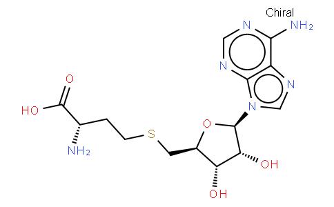 5'-DEOXY-S-ADENOSYL-L-HOMOCYSTEINE