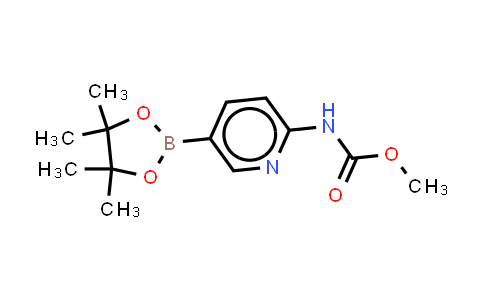 2-(Methoxycarbonylamino)pyridine-5-boronic acid pinacol este