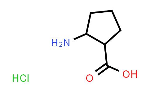 2-Aminocyclopentanecarboxylic acid hydrochloride