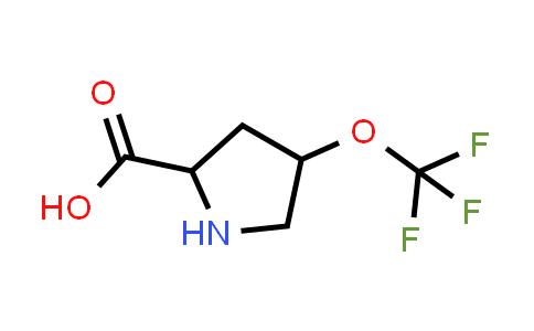 4-(Trifluoromethoxy)pyrrolidine-2-carboxylic acid