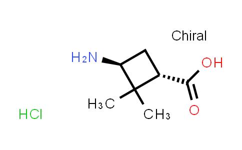 trans-3-Amino-2,2-dimethylcyclobutane-carboxylic acid hydrochloride