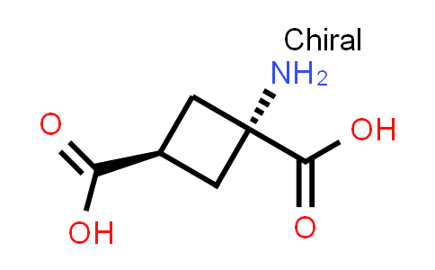 cis-1-Aminocyclobutane-1,3-dicarboxylic acid