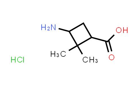 3-Amino-2,2-dimethylcyclobutane-carboxylic acid hydrochloride