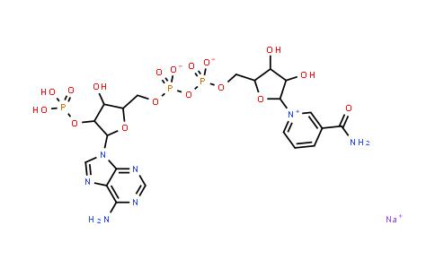 beta-Nicotinamide adenine dinucleotide phosphate sodium salt